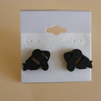 Cute Clown fish Silhouette earrings