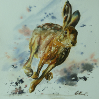 Hare, Original Watercolour Painting.