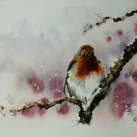 Winter Robin, Original Watercolour Painting.