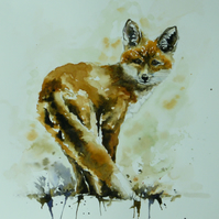 Fox, Original Watercolour Painting.