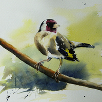 Goldfinch, Original Watercolour Painting.