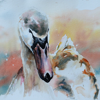 Swan, Original Watercolour Painting.