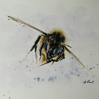 Bee, Original Watercolour Painting.
