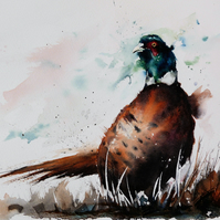 Pheasant, Original Watercolour Painting.