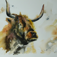 Highland Cow, Original Watercolour Painting.