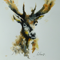Stag Portrait, Original Watercolour Painting.