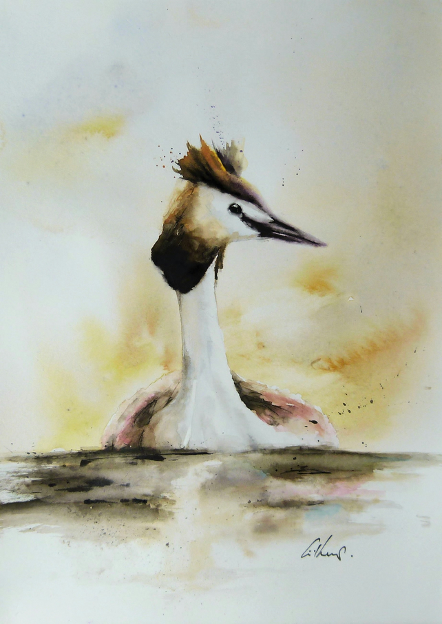 Great Crested Grebe, Original Watercolour Painting.