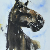 A Dark Horse, Original Watercolour Painting.