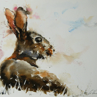 Rabbit, Original Watercolour Painting.