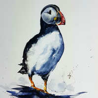 Puffin, Original Watercolour Painting.