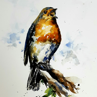 Robin, Original Watercolour Painting.
