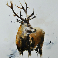 The Stag, Original Watercolour Painting.