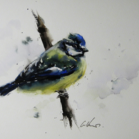 Blue Tit, Original Watercolour Painting.