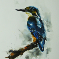 Kingfisher, Original Watercolour Painting.