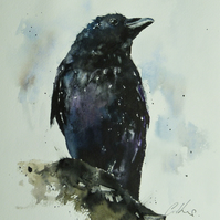 Raven, Original Watercolour Painting.