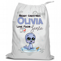 Santa Christmas Sack, Christmas Sack , Seal On Ice, Personalised Christmas