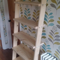 Lean to bookcase ladder shelf