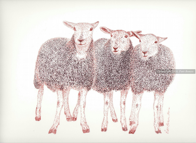 Three Sheep Print, Giclee sheep print