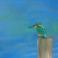 Kingfisher bird art original oil painting