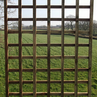 Square Pressure Treated Heavy Duty Trellis Panel 6ft High x 1ft Wide