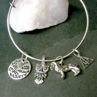 Harry Potter Charm Bangle