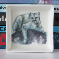 Puma, Cougar, Mountain Lion Design Ceramic Dish, 10 x 10cm, Many Uses