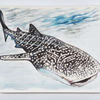 Whale Shark Artwork Design Chunky Ceramic Wall Plaque Ready to Hang