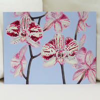 Moth Orchid Acrylic Painting on Wooden Panel