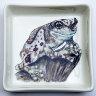 Amazon Milk Frog Design Ceramic Dish, 10 x 10cm, Many Uses