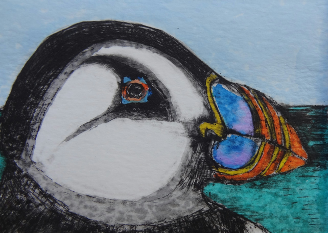 Puffin - Original hand coloured etching of a Puffin, Seabird.