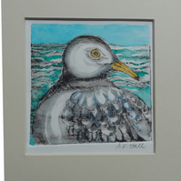 Seagull - Original Hand Coloured Etching of a Gull, Seabird.