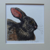 Rabbit - Original Hand Coloured Etching