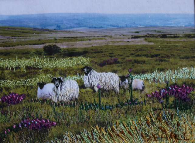 North Yorkshire Moors with Sheep