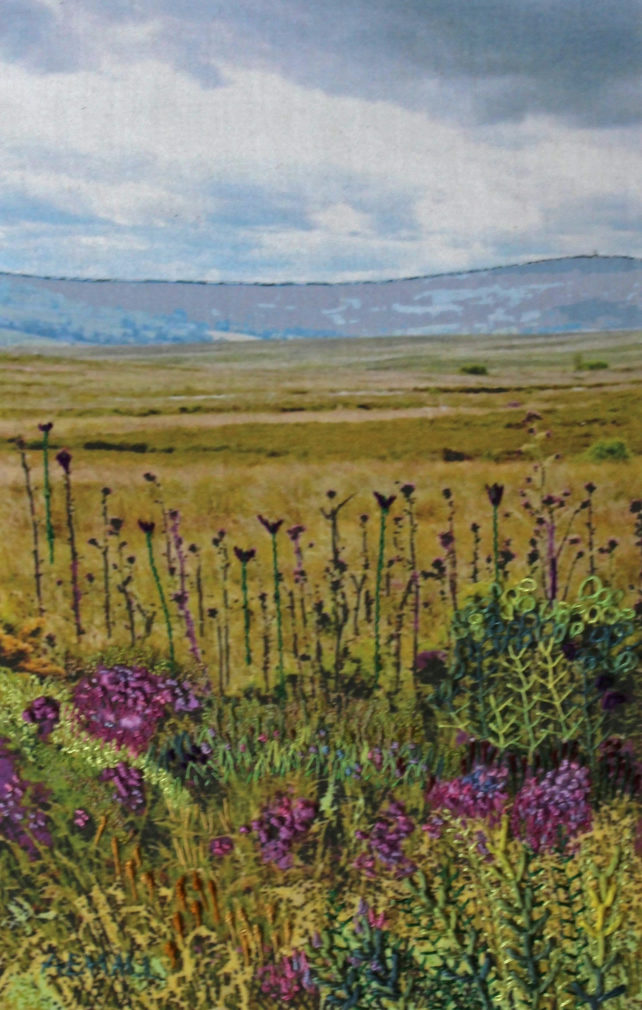 North Yorkshire Moors with Thistles
