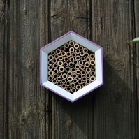 Bee House, Bee Hotel and Insect House in Purple & White, Hexagon - Gardener Gift