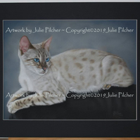 Commission an Original Custom Pet Portrait of your much loved Companion