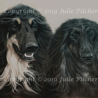Original Pastel Pet Portrait Commission for a Double Head Study