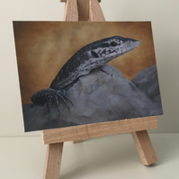 "ACEO Print - Timor Monitor Lizard - ""Now you see me"""