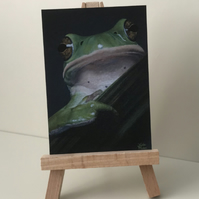 "ACEO Print - Tree Frog - ""Emerald Prince"""