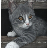 A5 Print taken from Original Pastel Painting of a Grey Kitten