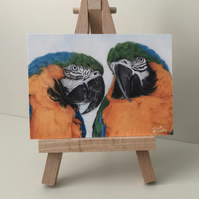 "ACEO Print - Macaw Duo - ""Forever Friends"""