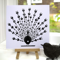 Peacock - Greetings Card