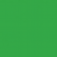 Plain green organic jersey fabric by JNY Colourful Kids (half metre)