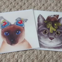 Cat with seashell and Siamese cat, 2 cat cards!