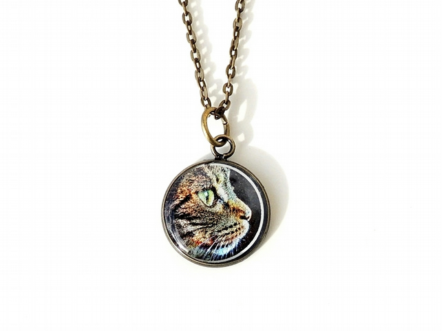 Cat Necklace, Retro Cat Face Photo Resin Necklace (561)
