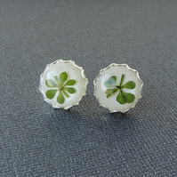 Green Leaf Resin Stud Earrings (1190)