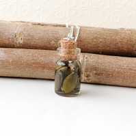 Pumpkin Seeds in Resin Bottle Necklace (725)