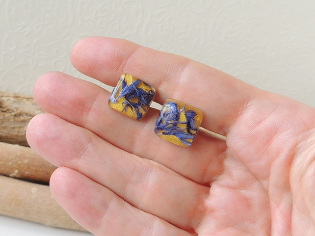 Yellow and Blue Stud Earrings (2287)
