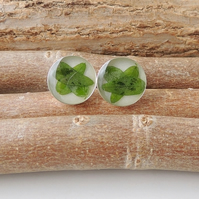 Green Leaf Cufflinks, Free UK Postage - SALE (2280)