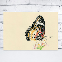 A4 Butterfly Print